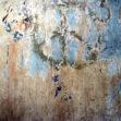 Protiplísňový nátěr zastaví novotvorbu plísně na zateplené fasádě